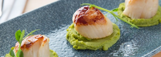 Tom's Table - Galley Head King Scallops on pea puree port and balsamic reduction